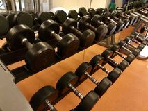 In the gym weights. Weight lifting in the gym perspective Royalty Free Stock Images