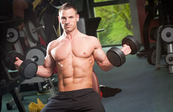 Gym workout. Royalty Free Stock Photography