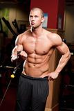 Gym workout. Royalty Free Stock Images