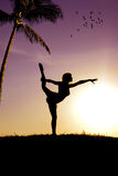 The gymnast. The girl-gymnast and a beautiful sunset Royalty Free Stock Images