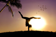 The gymnast. The girl-gymnast and a beautiful sunset Royalty Free Stock Photo