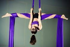 Gymnast Royaltyfria Foton