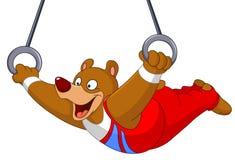 Gymnast bear Royalty Free Stock Image