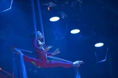 Gymnaste sur des toiles Photographie stock libre de droits