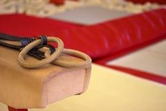 Free Gymnastic Equipment In A Gymnastic Club Stock Photos - 95595483