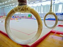 Gymnastic rings. Hang in the gym Royalty Free Stock Image