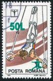 Gymnastics Royalty Free Stock Image