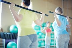 Gymnastics with bars. Two sweaty plus-sized women exercising with gymnastics bars and following instructions of their fitness trainer Royalty Free Stock Photo