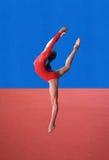 Gymnastics poses Royalty Free Stock Photo