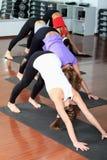 Gymnastiek Royalty-vrije Stock Afbeeldingen