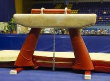 Gymnastiek- paard Royalty-vrije Stock Afbeeldingen