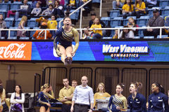 2015 gymnastique de NCAA - état de WVU-Penn Photos libres de droits