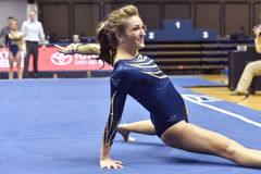 2015 gymnastique de NCAA - état de WVU-Penn Photos stock