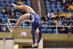 2015 gymnastique de NCAA - état de WVU-Penn Photo stock