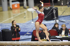 2015 gymnastique de NCAA - le Maryland Photo libre de droits