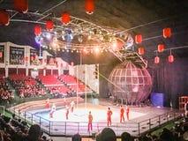 Gymnastiska shower för Jeju cirkusvärld Arkivbild