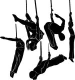 Gymnasts acrobats. Flying acrobats gymnasts athletes Vector isolated Stock Images