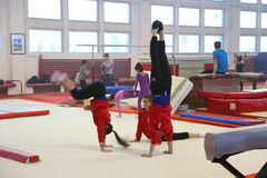 Gymnasts in training Royalty Free Stock Photos