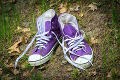 Gymshoes in green grass Stock Photography