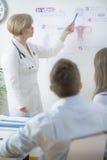 Gynecologist wyjaśnia w Vitro procesie fotografia stock