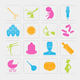 Gynecology and pregnancy icon set. Motherhood elements. Construc Royalty Free Stock Images