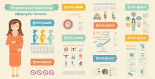 Gynecology and pregnancy infographic template. Motherhood elemen Stock Photography