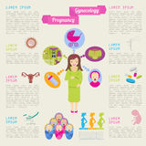Gynecology and pregnancy infographic template. Motherhood elemen Stock Photo