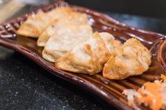 Gyoza或饺子 免版税图库摄影
