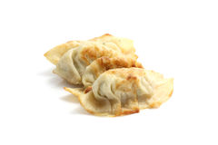 Gyoza Royalty Free Stock Photo