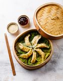 Gyoza dumpling in bamboo steamer, sesame and sauce Stock Images