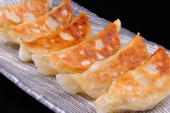 Gyoza Royalty Free Stock Photography