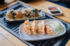 Gyoza Japan kluchy Obraz Royalty Free