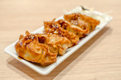 Gyoza, Japanese Fried Dumplings on white dish Stock Photo