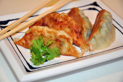Gyoza in a Japanese restaurant. Stock Photos