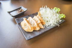 Gyoza on the plate Royalty Free Stock Image