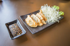 Gyoza on the plate Royalty Free Stock Photos
