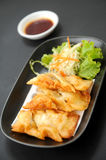 Gyoza sets Royalty Free Stock Photo