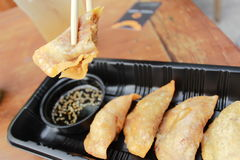 Gyoza with souce Stock Image