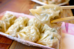 Gyoza Royalty Free Stock Photos