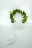 Gypso i zieleń liście koronujemy z długim białym faborkiem dla kwiatu g fotografia royalty free