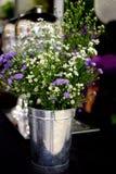 Gypsophila na cesta Fotografia de Stock Royalty Free