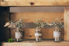 Gypsophila three jars Royalty Free Stock Photo