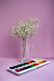 Gypsophila and watercolor paints. Three sprigs of gypsophilas in vase and watercolor paints on pink background. Vertical imagination Royalty Free Stock Photography