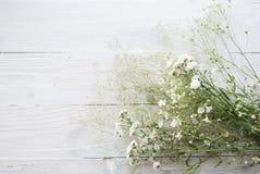 Gypsophilabloemen op houten achtergrond stock afbeelding