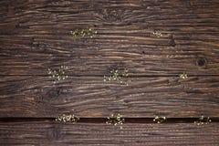Gypsophilaen blommar på gammalt trä Royaltyfri Foto