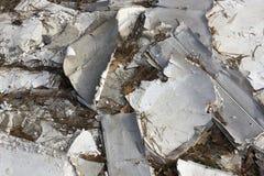Gypsum cardboard pollutes the wood stock photo