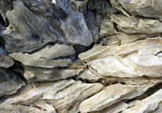 Gypsum crystals. A detailed view of some gypsum crystals, as one can find in nature stock images