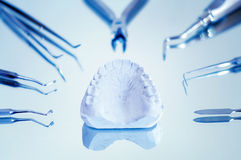 Gypsum dentures. Surrounded by dental instruments , shallow dof Royalty Free Stock Photos