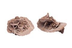 Gypsum desert sand rose. Isolated on white background Stock Photo