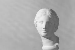 Gypsum head. Aphrodite. Gypsum head of goddess Aphrodite royalty free stock photography